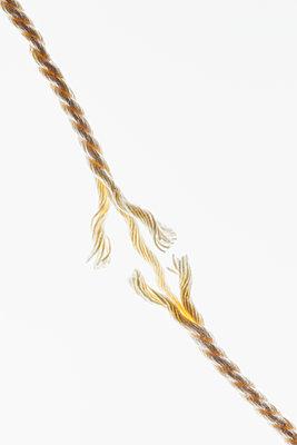 Tear the thread - p1149m2271398 by Yvonne Röder