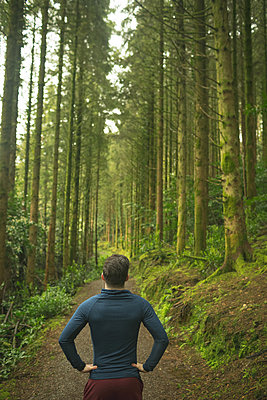 Rear view of man standing in lush forest - p1315m2003054 by Wavebreak