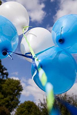 Weiß und Blau - p993m758830 von Sara Foerster