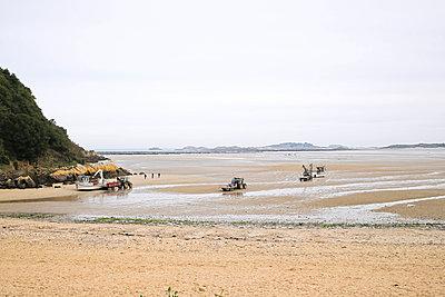 Low Tide for Oysters - p1307m1497320 by Agnès Deschamps