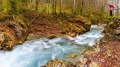 Germany, Bavaria, Oy brook in Oy Valley - p300m1449742 by Walter G. Allgöwer