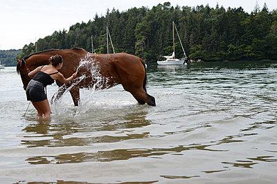 Pferd baden - p1631m2209791 von Raphaël Lorand