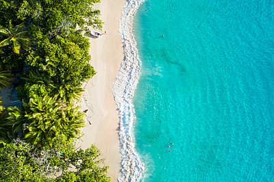 Aerial view of Anse Lazio beach. Praslin island, Seychelles, Africa - p651m2033025 by Andrea Comi