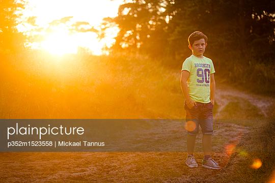 p352m1523558 von Mickael Tannus