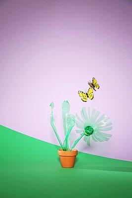 PET-Blume - p237m1553183 von Thordis Rüggeberg