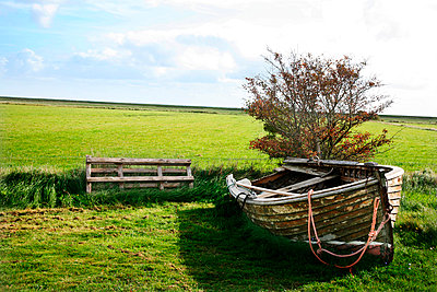 Rowing boat - p1038m901141 by BlueHouseProject