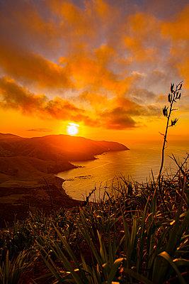 Sonnenaufgang an der Ostküste von Neuseeland - p1455m2203690 von Ingmar Wein
