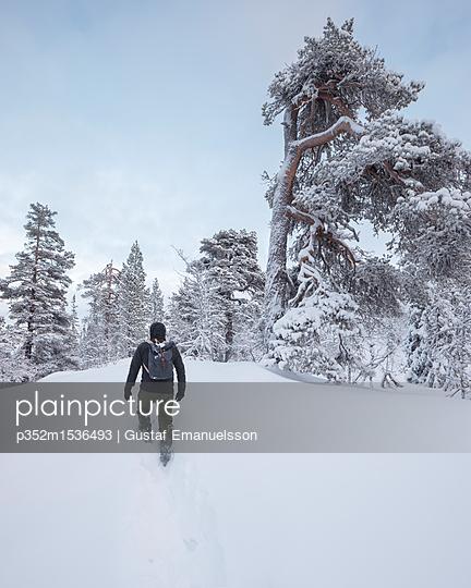 p352m1536493 von Gustaf Emanuelsson