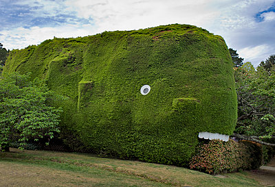 Whale hedge sculpture - p1125m1582641 by jonlove