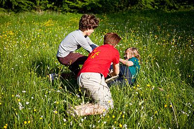 Jungen toben im hohen Gras - p1195m1138147 von Kathrin Brunnhofer