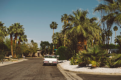 Vintage car parked on suburban road, Palm Springs, California, USA - p429m1014574 by Kate Ballis