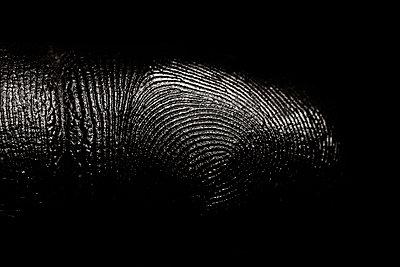 Fingerpring - p910m2182346 by Philippe Lesprit