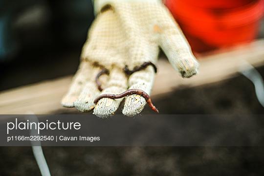 p1166m2292540 von Cavan Images