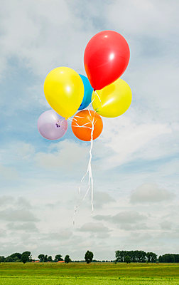Balloons floating in the air - p429m929449f by Mischa Keijser