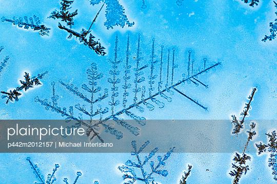 p442m2012157 von Michael Interisano
