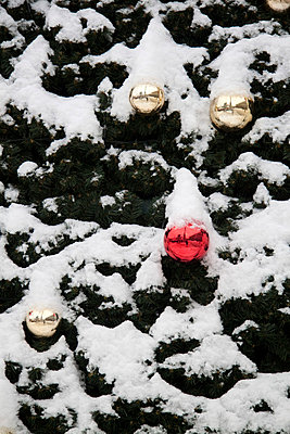 Weihnachten - p7390386 von Baertels