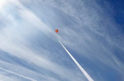 Roter Drachen - p0042080 von Normal