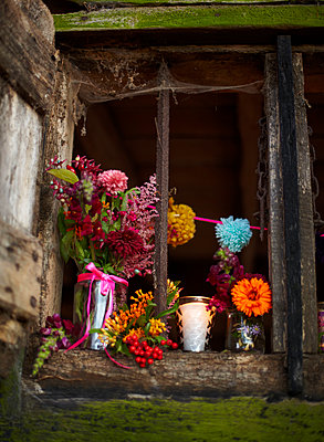 Cut flowers in window of rustic wood cabin in Autumn  UK - p349m2167840 by Sussie Bell