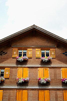 Alpine house - p464m918857 by Elektrons 08
