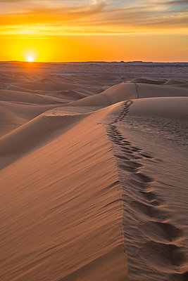 Sunset in the giant sand dunes of the Sahara Desert, Timimoun, western Algeria, North Africa - p871m2101227 by Michael Runkel