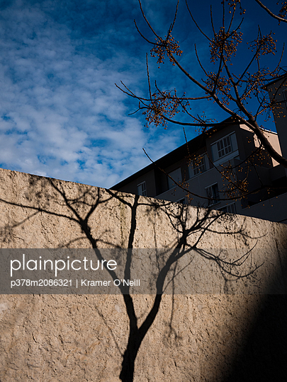 Tree Minus - p378m2086321 by Kramer O'Neill