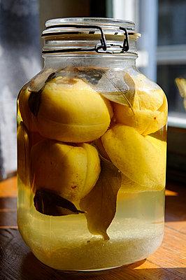 Jar of salt pickled lemons, close up - p300m827334f by Lisa und Wilfried Bahnmüller