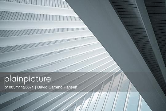 Grafisches Flughafendach - p1085m1123871 von David Carreno Hansen