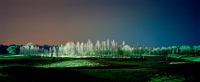 Golf court at night - p1132m1016982 by Mischa Keijser