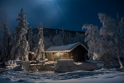 Chena Hot Springs by snow covered trees against log cabin - p1166m1509524 by Cavan Images