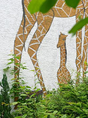Giraffe - p1164m1143426 von Uwe Schinkel
