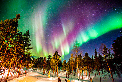 Northern lights in Finnish Lapland - p343m1121024 by Tim Martin