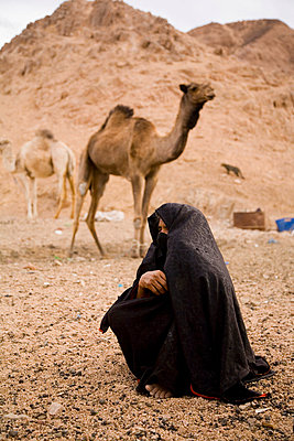 Bedouin woman and camels - p4692650 by Felix Oppenheim