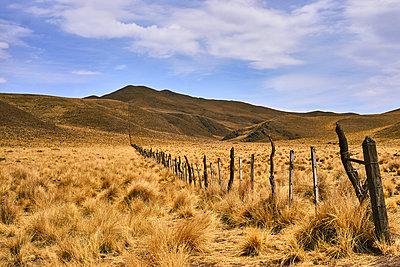 Argentina, Pastureland - p1686m2288551 by Marius Gebhardt