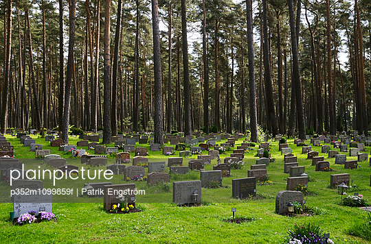 Sweden, Stockholm, View of cemetery - p352m1099859f by Patrik Engström