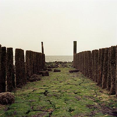An der Nordsee - p3420073 von Thorsten Marquardt