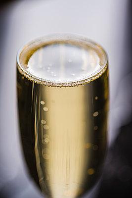 Champagner - p954m1091225 von Heidi Mayer