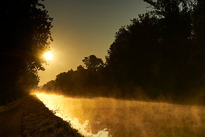 Trees and channel against the light - p1312m2262375 by Axel Killian