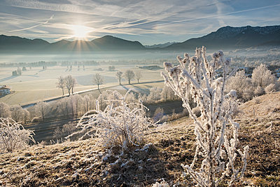 Germany, Bavaria, Grossweil, sunrise in winter - p300m1416662 by Martin Siepmann