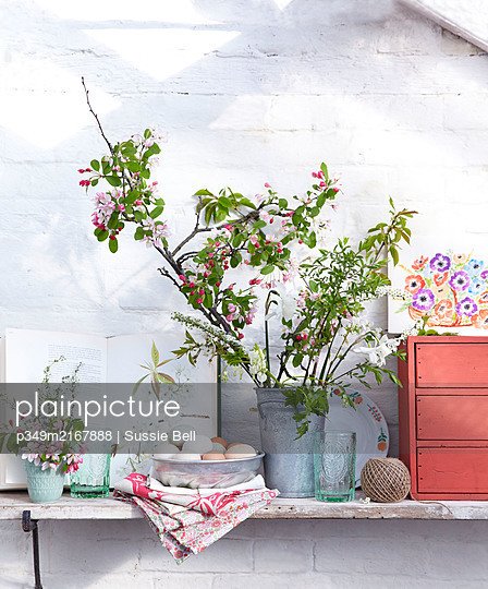 Metal bucket with branches of blossom om bright pink chair in greenhouse - p349m2167888 by Sussie Bell