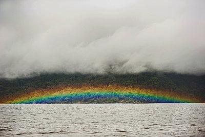 Regenwald mit Regenbogen - p1167m965795 von Maria Schiffer