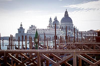 Italy, Venice, Church Santa Maria della Salute - p300m911155f by EJW