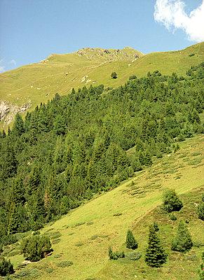 Graubünden Lenzerheide - p6060374 von Iris Friedrich