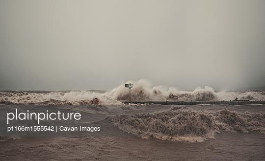p1166m1555542 von Cavan Images