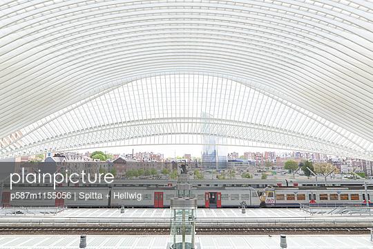 Bahnhof Liège-Guillemins in Lüttich, Dachkonstruktion - p587m1155056 von Spitta + Hellwig