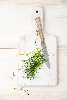 Rock Chives and knive on chopping board - p300m1156560 by Mandy Reschke