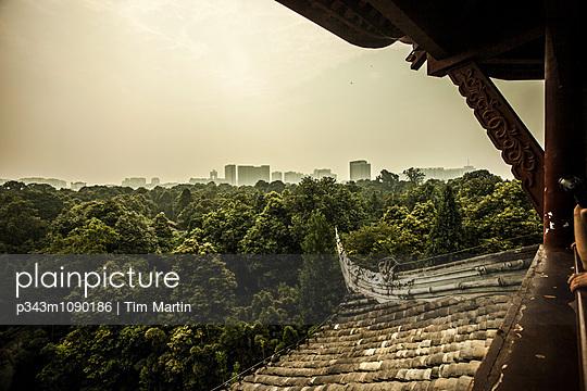p343m1090186 von Tim Martin