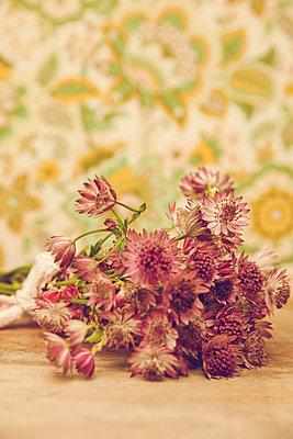 Verblüht - p904m1020405 von Stefanie Päffgen