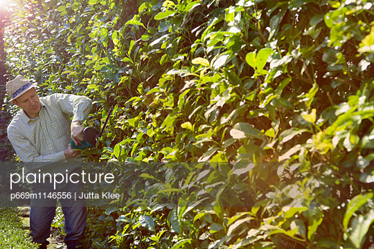 p669m1146556 von Jutta Klee