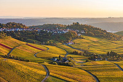 Germany, Baden-Wuerttemberg, Stuttgart Rotenberg, burial chapel and vineyards in autumn at sunset - p300m2070692 by Werner Dieterich