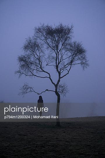 p794m1200324 von Mohamad Itani